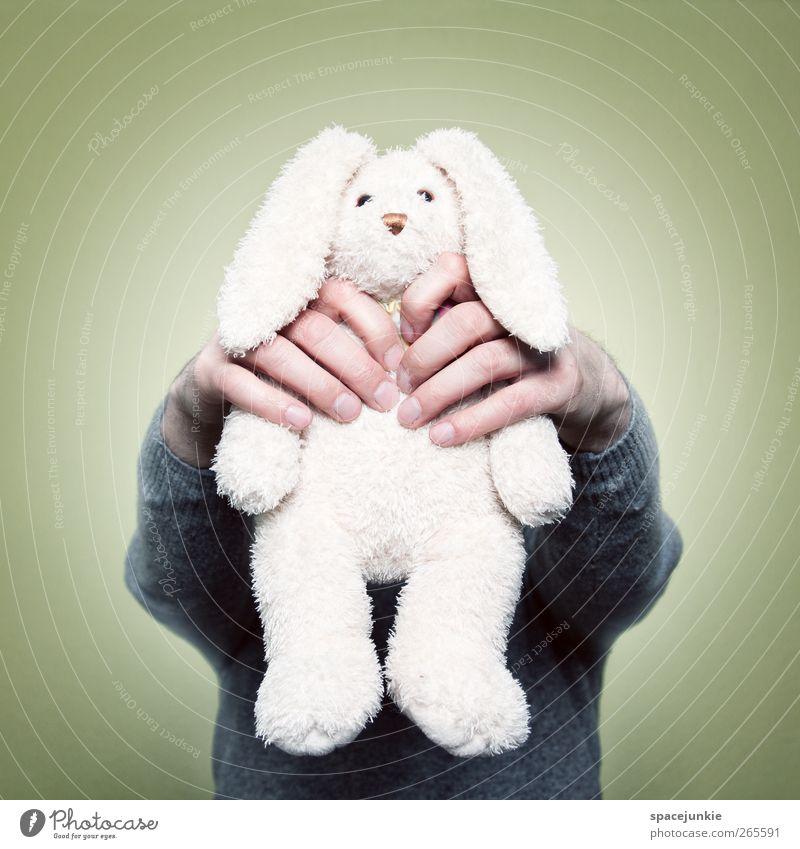Who killed the rabbit? 1 Mensch Tier fangen gruselig gelb weiß Rache skurril Humor humorvoll Hase & Kaninchen Stofftiere Spielzeug strangulieren töten Hand