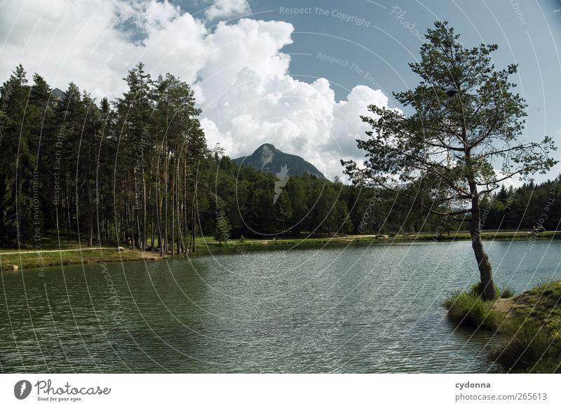 Waldsee Himmel Natur Wasser Baum Ferien & Urlaub & Reisen Sommer Einsamkeit Wolken ruhig Wald Ferne Erholung Umwelt Landschaft Berge u. Gebirge Freiheit