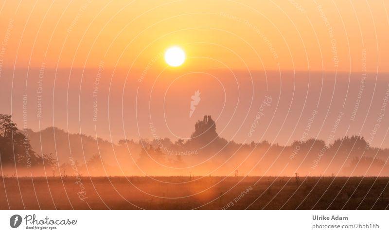 Nebel Impressionen - Natur und Landschaft Wellness harmonisch Erholung ruhig Meditation Ferien & Urlaub & Reisen Abenteuer Trauerfeier Beerdigung Herbst Winter