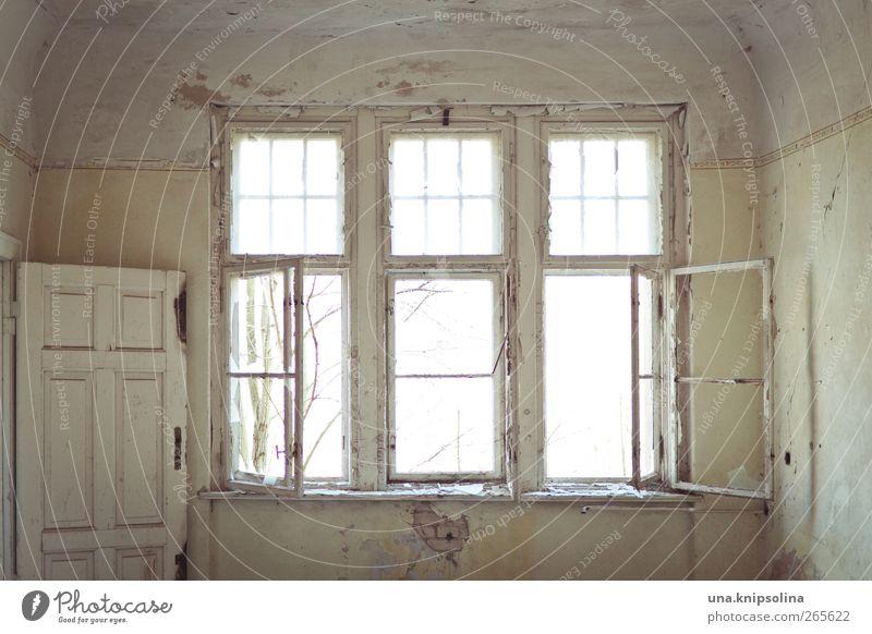 fensterplatz Renovieren Innenarchitektur Menschenleer Haus Ruine Gebäude Architektur Mauer Wand Fassade Fenster Tür Glas alt dreckig kaputt Stimmung Verfall