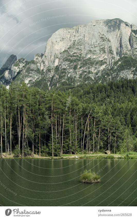 Grüne Insel Natur Wasser Ferien & Urlaub & Reisen Sommer Einsamkeit ruhig Wald Ferne Erholung Umwelt Landschaft Berge u. Gebirge Freiheit See träumen wandern
