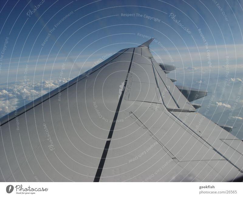 hard cut blau Freiheit Luftverkehr Spannweite