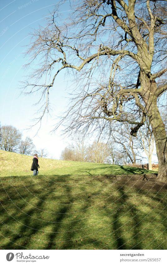 karfreitagsbeschäftigung. Natur Jugendliche blau grün Baum Einsamkeit Erwachsene Erholung Landschaft Ferne Umwelt feminin Berge u. Gebirge Leben Frühling Gras