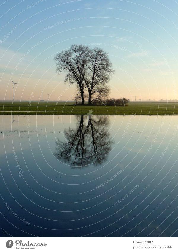 Harmonie Natur Landschaft Pflanze Wasser Himmel Horizont Frühling Baum Gras Feld See Überschwemmung überschwemmtes Feld Windkraftanlage Gefühle Glück