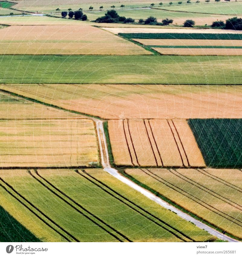 Landwirtschaft Natur Stadt Pflanze Umwelt Landschaft Wiese Linie hell Deutschland Feld elegant Ordnung Perspektive authentisch Zukunft Streifen