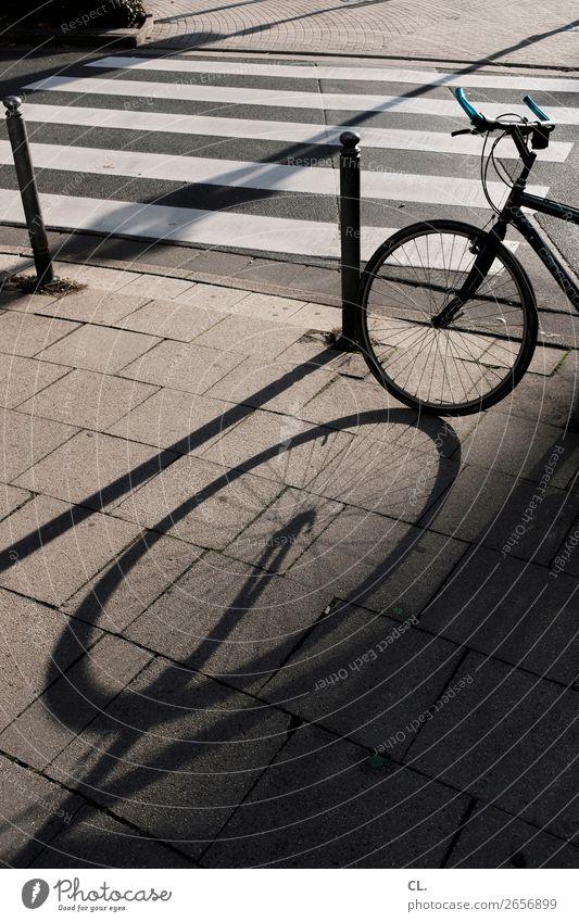 fahrrad und zebrastreifen Sonnenlicht Schönes Wetter Verkehr Verkehrsmittel Verkehrswege Straßenverkehr Fahrradfahren Wege & Pfade Zebrastreifen Poller rund