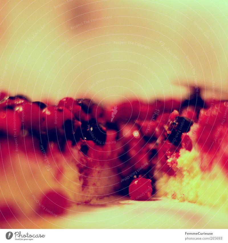 Saftige Früchtchen. rot Freude Lebensmittel Freundschaft Frucht Ernährung gefroren Teile u. Stücke Bioprodukte Frühstück Kuchen Beeren Picknick Vegetarische Ernährung Teigwaren Versuch
