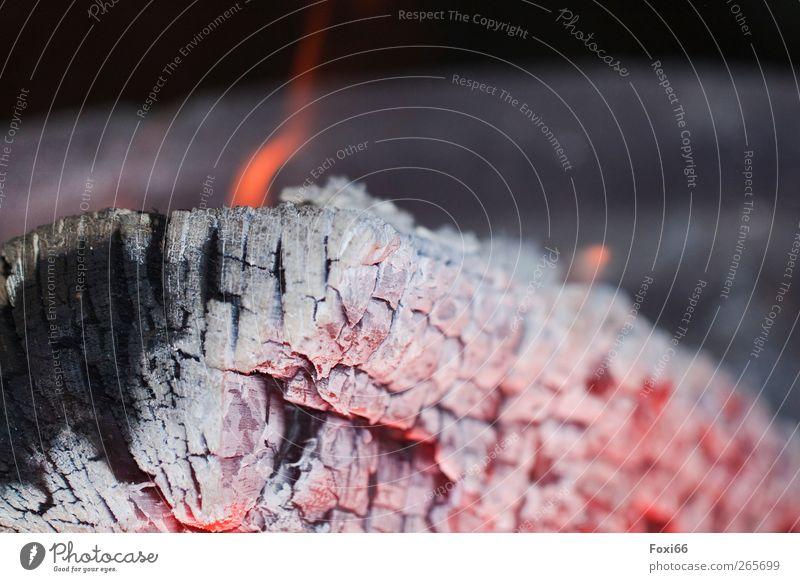 "Osterfeuer Feste & Feiern Feuer Holz Glut Asche heiß Wärme gold grau rot schwarz Romantik ruhig Flamme ""Zerfall,"" Nahaufnahme Makroaufnahme Textfreiraum oben"