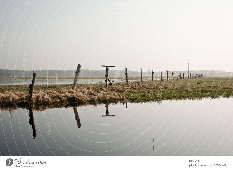 das frühjahrshochwasser Himmel Natur Wasser grün Landschaft Freiheit Gras Linie Feld Schwimmbad Unendlichkeit Weide Angeln Meditation Pfosten Spiegelbild