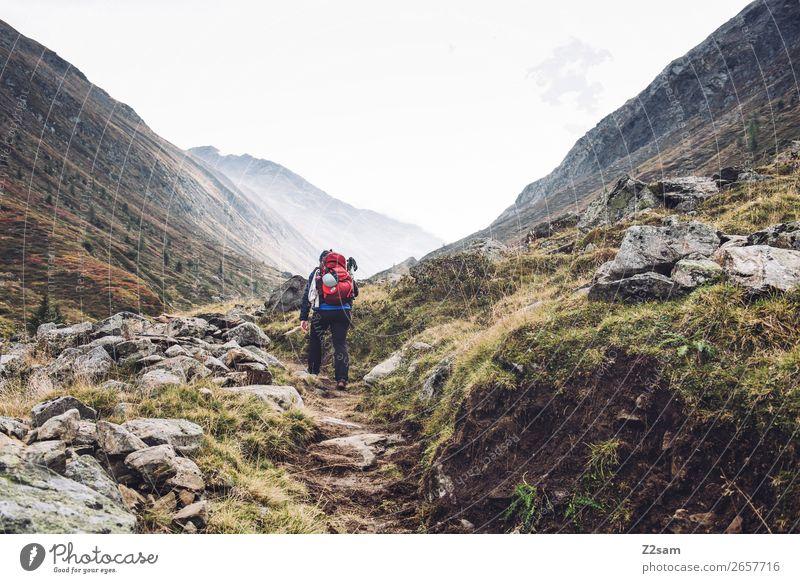 Aufstieg zum Timmelsjoch | E5 Ferien & Urlaub & Reisen Abenteuer wandern Junge Frau Jugendliche 18-30 Jahre Erwachsene Natur Landschaft Herbst Nebel Wiese Alpen