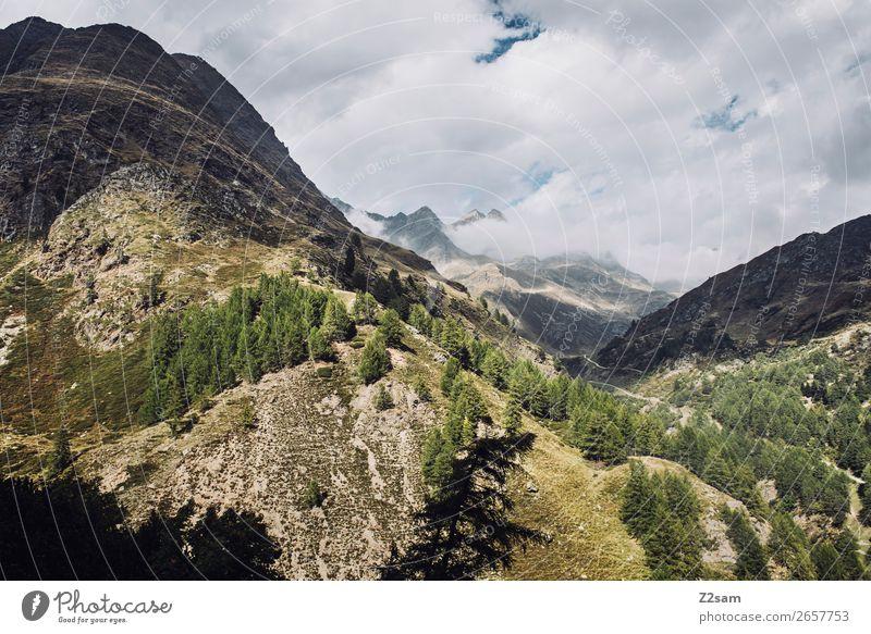Alpen | Südtirol Abenteuer wandern Natur Landschaft Wolken Schönes Wetter Berge u. Gebirge Gipfel bedrohlich gigantisch natürlich grün Einsamkeit Freiheit