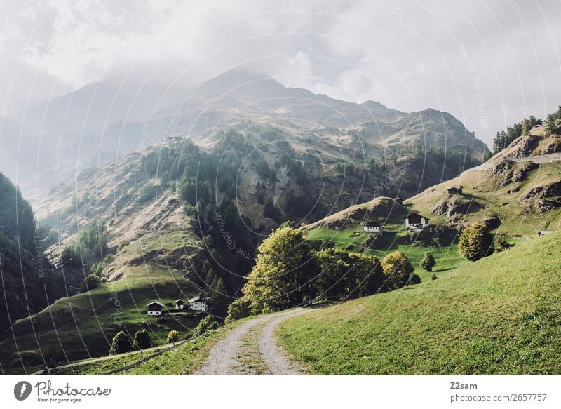 Südtirol | Alpenüberquerung Abenteuer wandern Umwelt Natur Landschaft Sonne Herbst Schönes Wetter Wiese Berge u. Gebirge Schlucht Dorf nachhaltig natürlich grün
