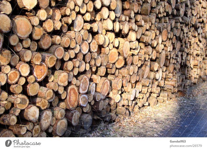 Holzstapel Baum Holz Baumstamm Holzstapel