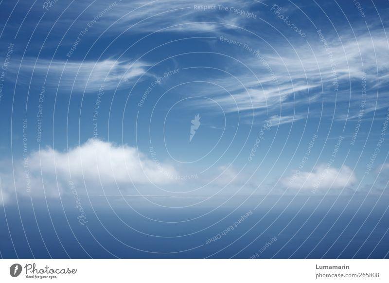 federleicht Umwelt Urelemente Luft Wasser Himmel Wolken Horizont Klima Schönes Wetter einfach Ferne frei frisch groß Unendlichkeit hoch oben schön blau Freiheit