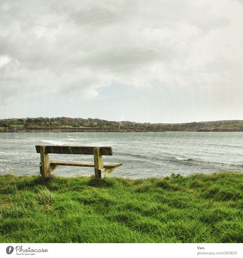 Meeresrauschen lauschen Landschaft Wasser Himmel Wolken Pflanze Gras Hügel Wellen Küste Bucht Atlantik Republik Irland Holz grün ruhig Freiheit abgelegen Bank