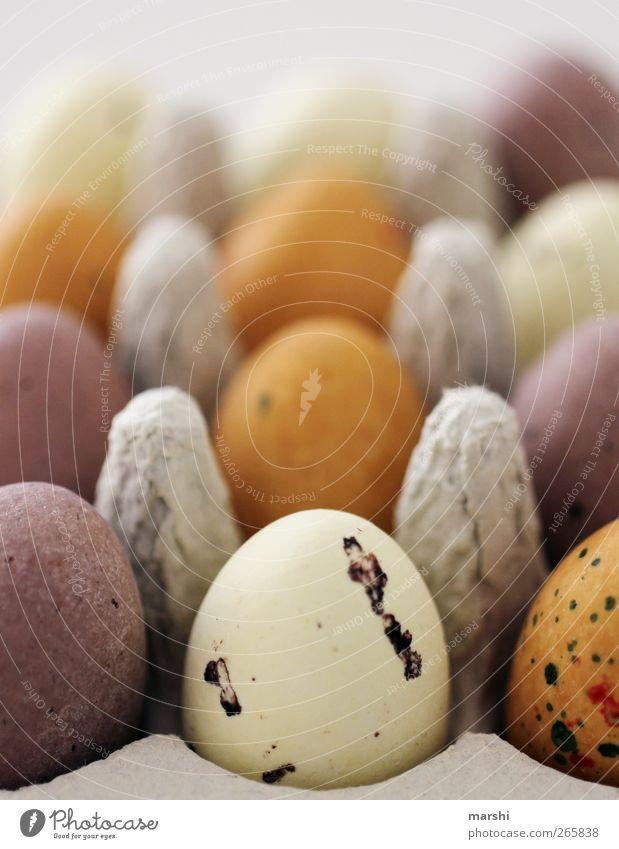 Ostereier-Ausbeute Ernährung Frühstück Bioprodukte Vegetarische Ernährung braun mehrfarbig gelb violett Ostern Osternest Vogeleier Eierkarton klein lecker