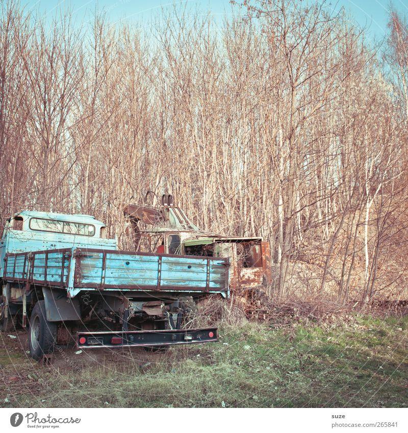 Schrottreif Industrie Umwelt Urelemente Himmel Sträucher Wiese Verkehr Fahrzeug Lastwagen Metall alt kaputt blau Ende Krise Nostalgie Vergänglichkeit