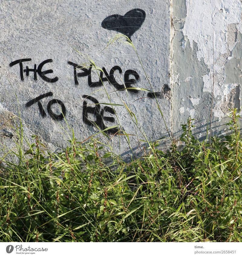 Junk ie's Retreat Einsamkeit Leben Graffiti Wand Traurigkeit Gras Mauer Stimmung Schriftzeichen Kommunizieren ästhetisch Herz authentisch Perspektive Armut