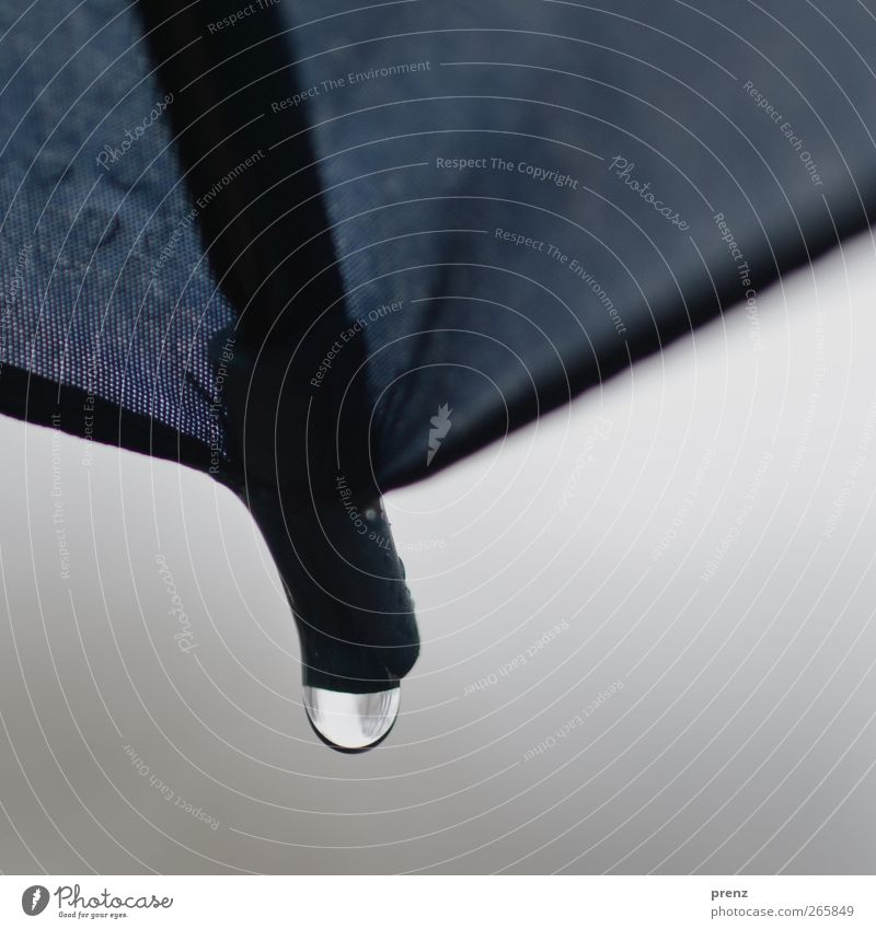 Regenschirmspitzentropfen Umwelt Wassertropfen Klima Wetter schlechtes Wetter Kunststoff blau grau schwarz Schirm Spitze Stoff Farbfoto Außenaufnahme