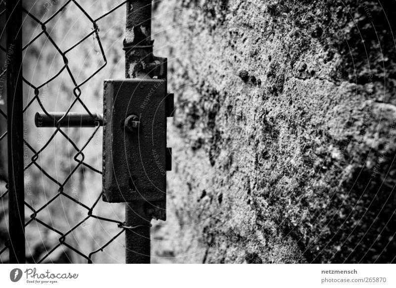 offene Tür Fabrik Ruine Tor Mauer Wand alt dreckig gruselig kalt kaputt trocken grau schwarz weiß Schutz Abenteuer Rost Gartentür Gartentor Schwarzweißfoto
