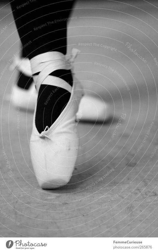 Ballet IX. Mensch Frau Jugendliche schön Mädchen Erwachsene feminin Bewegung Junge Frau Stil Fuß Kraft 18-30 Jahre elegant Geschwindigkeit ästhetisch
