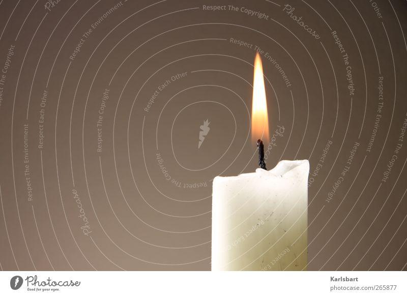 Carpe diem! Weihnachten & Advent Tod Feste & Feiern braun Häusliches Leben Dekoration & Verzierung Geburtstag Vergänglichkeit Zeichen Trauer Kerze Veranstaltung