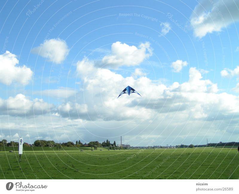 flieger Himmel Baum blau Wolken Wiese Wetter fliegen Drache Rhein Duisburg Deich