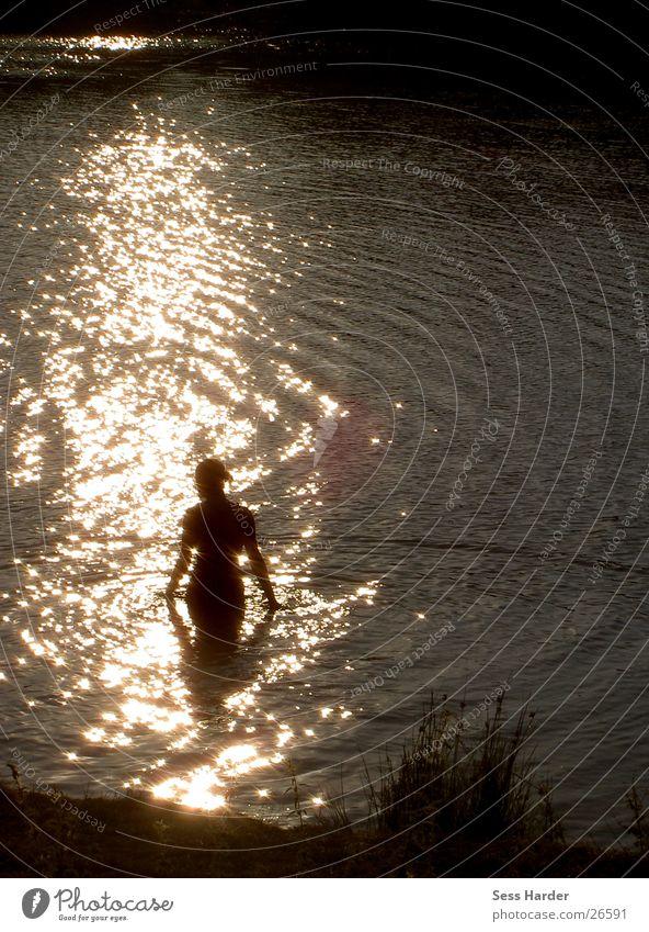 Reflektion Wasser Sonne Sommer See Schwimmen & Baden Composing Lichteinfall Badesee