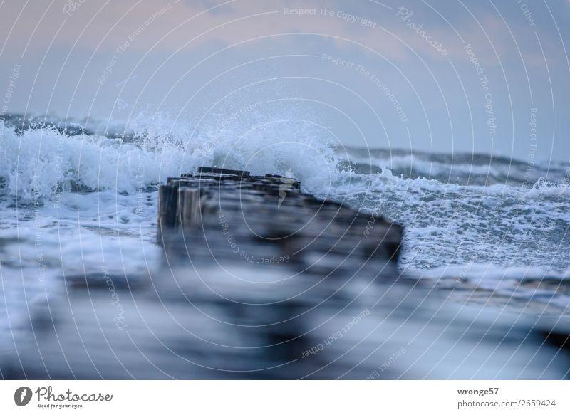 Herbststurm am Meer Natur Urelemente Luft Wasser Wassertropfen Himmel Wolken Horizont Wetter Unwetter Wind Sturm Wellen Küste Strand Bucht Ostsee maritim nass