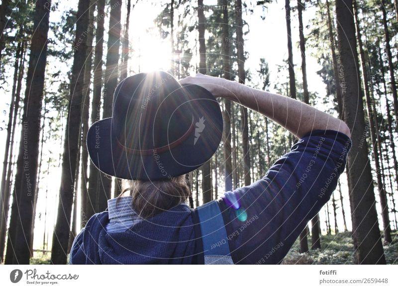 Fotocowboy im Gegenlicht maskulin 1 Mensch beobachten Fotografieren Wald Hut Blick ruhig Gedeckte Farben Außenaufnahme Tag Blick nach oben