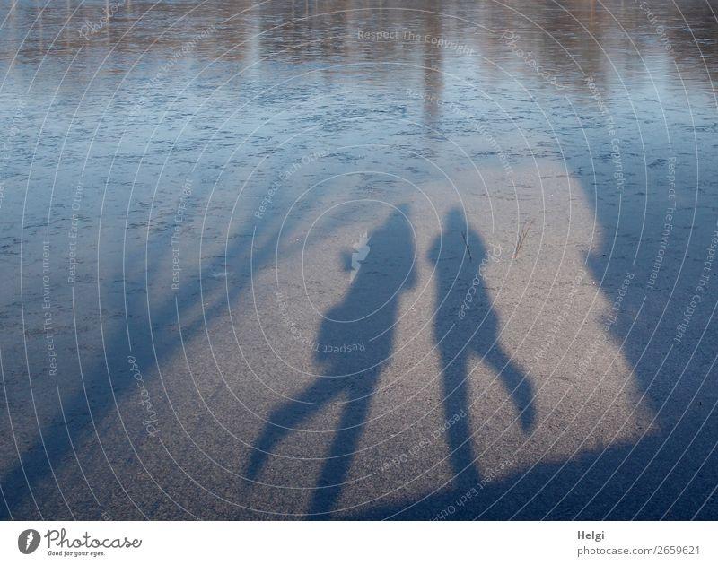 Schatten von zwei tanzenden Menschen auf einer Eisfläche Freizeit & Hobby feminin 2 60 und älter Senior Umwelt Natur Winter Schönes Wetter Frost Seeufer