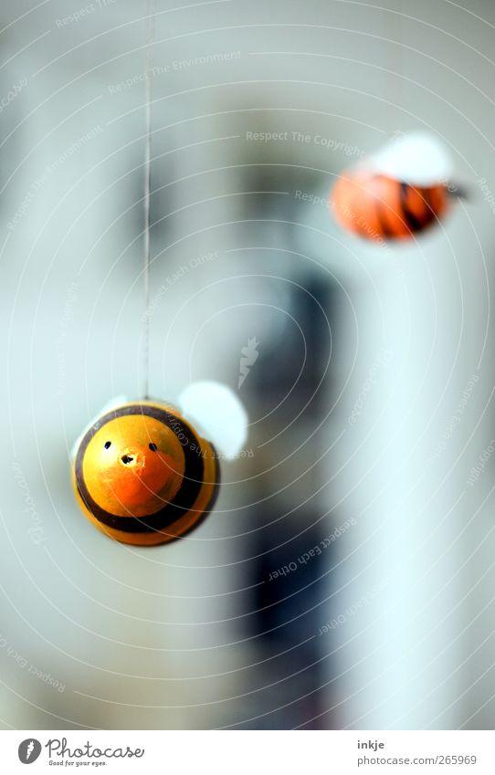 Osterhummeln Tier Wohnung fliegen Freizeit & Hobby Dekoration & Verzierung Ostern rund niedlich Kreativität Kitsch Idee Biene dick Lebensfreude hängen gestreift