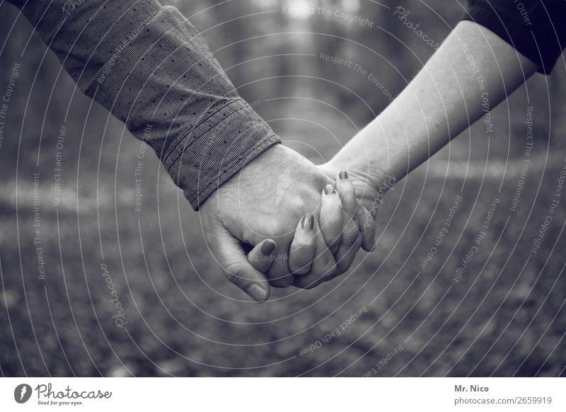 Hand in Hand Mensch Liebe Wege & Pfade Gefühle Paar Zusammensein Freundschaft Zufriedenheit Zukunft Finger Romantik berühren Schutz Sicherheit festhalten