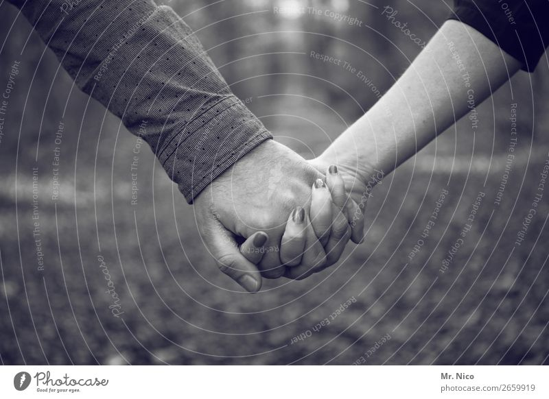 Hand in Hand Paar Partner Finger 2 Mensch Zufriedenheit Akzeptanz Vertrauen Sicherheit Schutz Geborgenheit Einigkeit loyal Sympathie Freundschaft Zusammensein