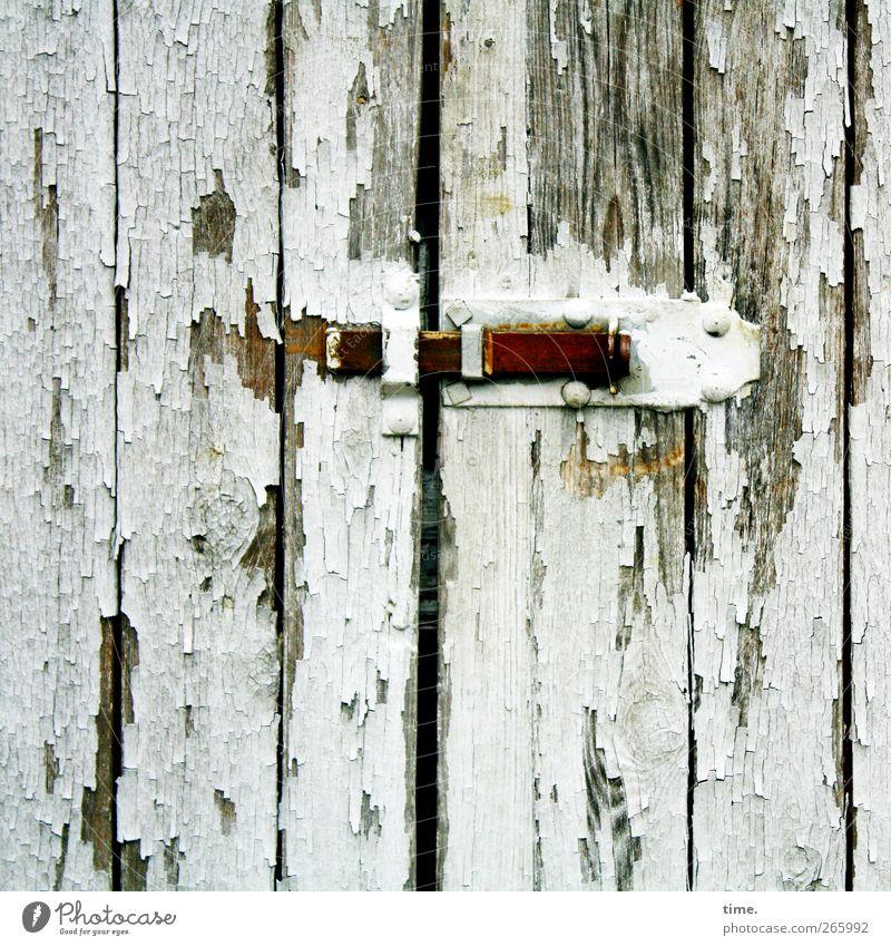 Sitzt, passt, wackelt und hat Luft* Tür Scheune Türschloss Beschläge Metallwaren Holz Lack lackiert hängen abblättern alt kaputt Farbfoto Gedeckte Farben