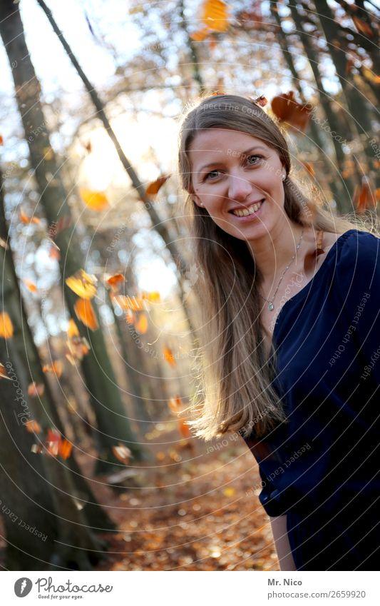 Herbstanfang feminin Frau Erwachsene 1 Mensch Umwelt Natur Schönes Wetter Baum Blatt Wald Kleid brünett langhaarig Lächeln lachen Glück Fröhlichkeit