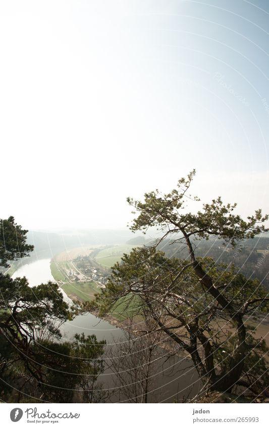 hinten der fluss. Natur Baum Sonne Ferne Landschaft Berge u. Gebirge Horizont Tourismus Fluss Hügel Schönes Wetter Ewigkeit Flussufer Schlucht Elbe Elbsandsteingebirge