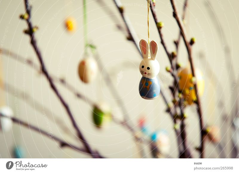 Frohösterliches Abhängen Frühling Dekoration & Verzierung Ostern niedlich Kitsch Hase & Kaninchen Figur Tradition bemalt festlich April Osterei Zweige u. Äste