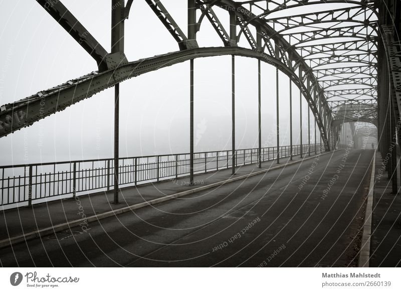 Eiswerderbrücke in Berlin bei Nebel Umwelt Landschaft Herbst See Brücke Verkehr Verkehrswege Personenverkehr Straßenverkehr Fahrradfahren retro Stadt grau