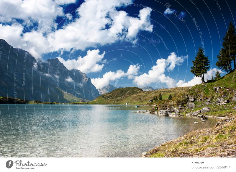 Gebirgssee Umwelt Natur Landschaft Luft Wasser Himmel Wolken Sonne Sonnenlicht Sommer Schönes Wetter Baum Gras Wildpflanze Felsen Alpen Berge u. Gebirge Gipfel