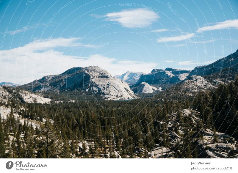 Yosemite Nationalpark Erholung Ferien & Urlaub & Reisen Tourismus Ausflug Abenteuer Camping Berge u. Gebirge wandern Umwelt Natur Landschaft Luft Baum Felsen