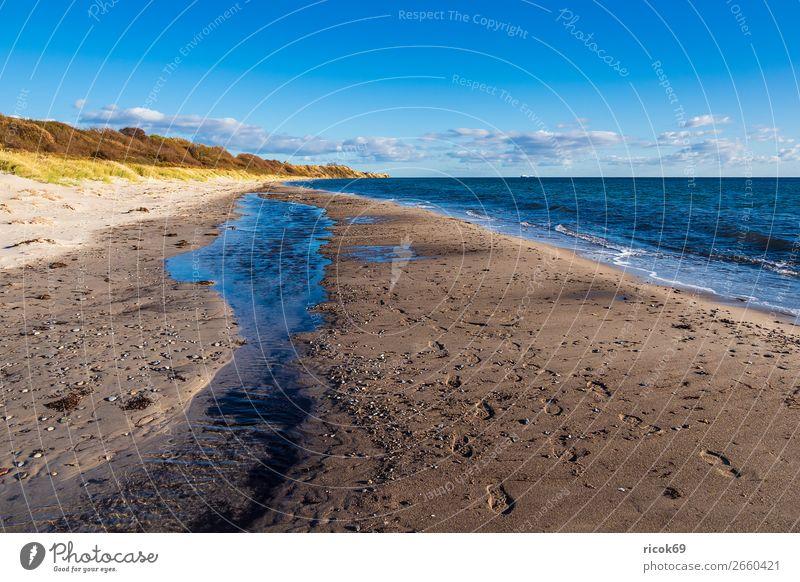 Ostseeküste bei Klintholm Havn in Dänemark Erholung Ferien & Urlaub & Reisen Tourismus Strand Meer Natur Landschaft Wasser Wolken Herbst Baum Küste Stein blau