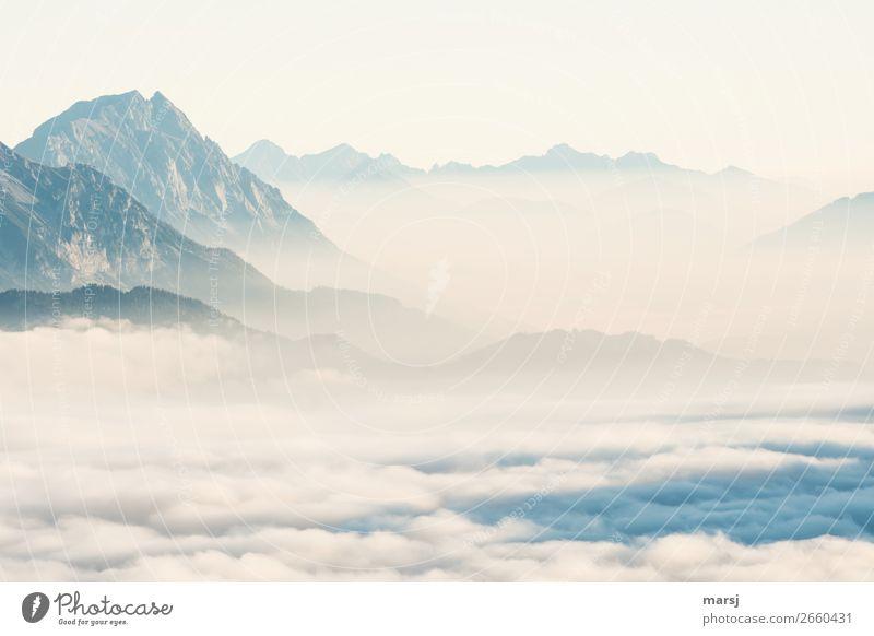 nebulös   so schön watteweich Natur Erholung Einsamkeit Ferne Berge u. Gebirge Tourismus Freiheit grau Felsen Ausflug träumen Nebel Abenteuer Gipfel Alpen