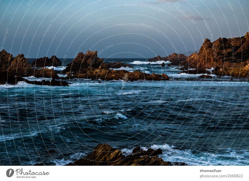 Wenn's dem Morgen graut Himmel Natur Ferien & Urlaub & Reisen Sommer Wasser Landschaft Sonne Meer Wolken Ferne Strand Küste Stimmung Horizont Wellen Luft