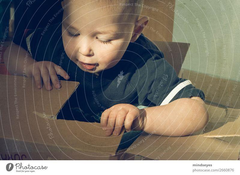 Kleiner Junge im Pappkarton Spielen Kindererziehung 1 Mensch 1-3 Jahre Kleinkind Verpackung Paket entdecken lernen Fröhlichkeit natürlich Neugier niedlich