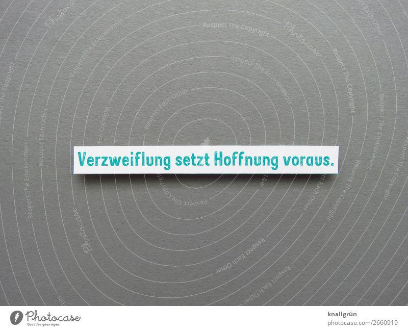Verzweiflung setzt Hoffnung voraus. Schriftzeichen Schilder & Markierungen Kommunizieren grau grün weiß Gefühle Neugier Enttäuschung Farbfoto Studioaufnahme