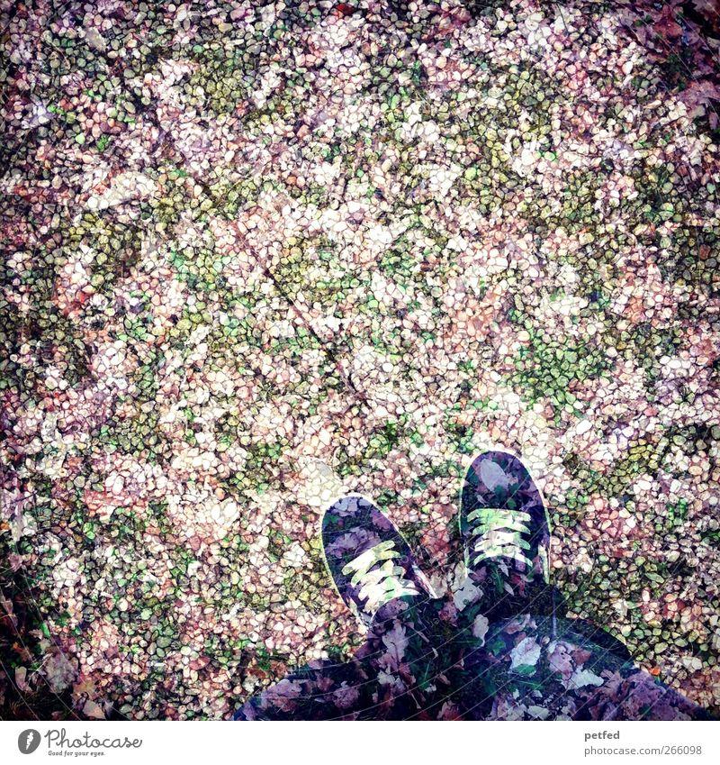 Im Traumland blau Herbst Beine stehen Jeanshose Doppelbelichtung Turnschuh Schuhe Steinplatten Muster Mensch