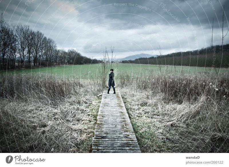 ________________ feminin Junge Frau Jugendliche 1 Mensch Landschaft Himmel Wolken Frühling Mantel Blick stehen blau grau grün graue Wolken dunkle Wolken Holzweg