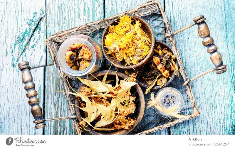 Korb mit Heilkräutern Linde Kraut Medizin Kräuterbuch Pflanze natürlich Blume alternativ Gesundheit Behandlung medizinisch Natur Heilung hölzern Blatt Aroma