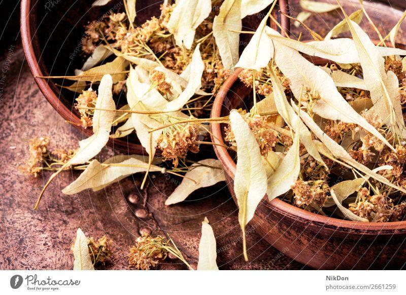 Trockenes Lindenblatt Kraut Pflanze medizinisch Tee Gesundheit Blatt alternativ Minenwerfer Homöopathie Heilung Therapie geblümt Kalk Getränk trocknen